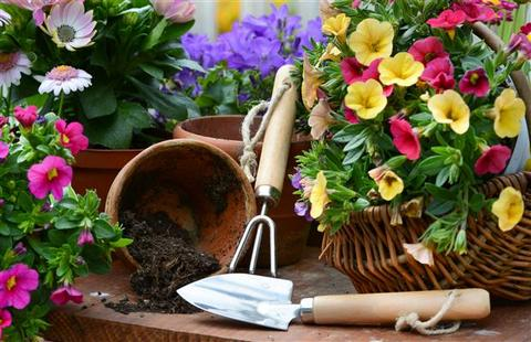 Gardening tools and pots