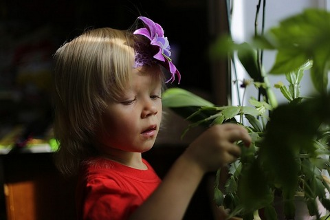 A little girl with flower in hair watering plants