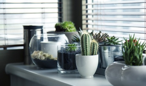 Add some style to window sills