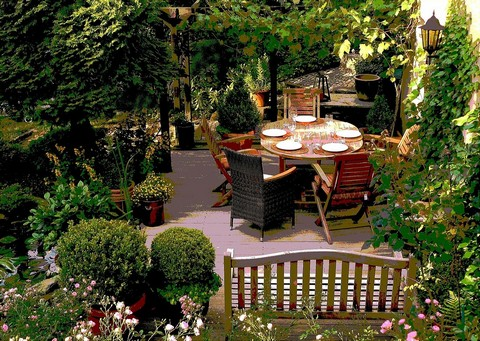 Home garden setting with lush plants and outdoor furniture