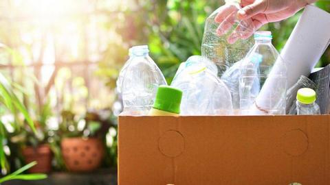 Eco-friendly waste removal includes separating your waste