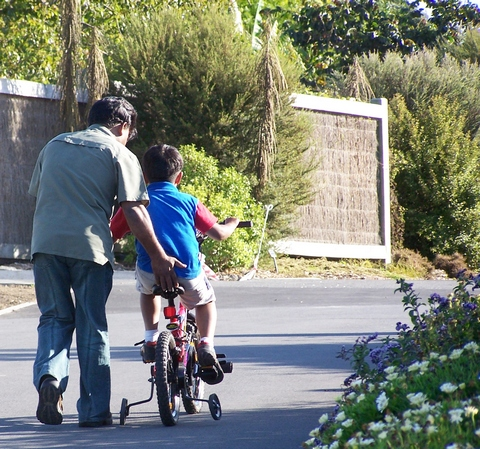 Father helping soon to ride bicycle